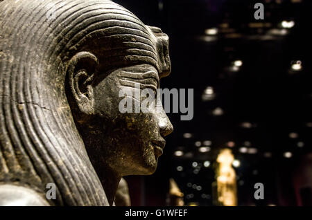 Turin, Italy, March 8 2013: profile side view of an egyptian sphinx statue at the Turin's Egypt Museum - Stock Photo