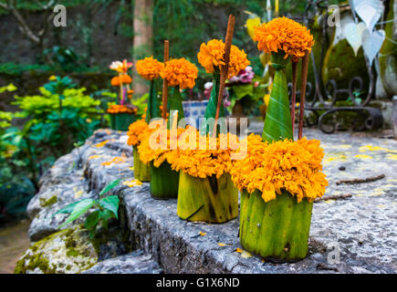 Strung Flowers victims, floral arrangement with incense, Mount Phousi, Luang Prabang Province, Louangphabang Province, - Stock Photo
