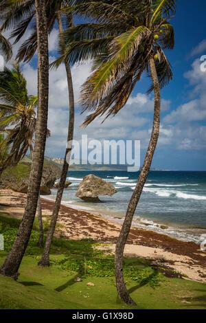 Bathsheba Rock in town of Bathsheba, Barbados, West Indies - Stock Photo