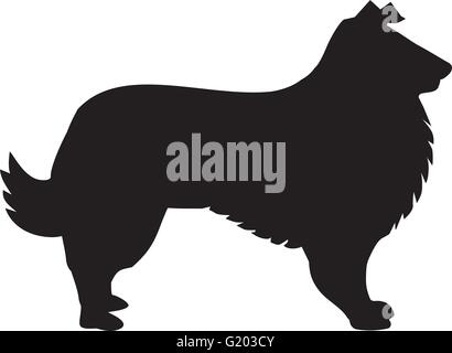 Collie dog silhouette - Stock Photo