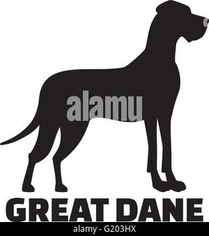 Great dane with breed name - Stock Photo