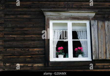 Old timbered house with red flowers 'Pelargonium' in the window, from the North of Sweden. - Stock Photo