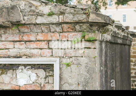 detail of an old tomb with ferns growing in the mortar between bricks in New Orleans - Stock Photo