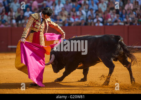 Bullfighter Juan José Padilla in action during a bullfight of the 'Feria de Abril' celebrated at Real Maestranza - Stock Photo