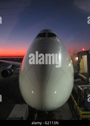 747 aircraft in sunset light - Stock Photo