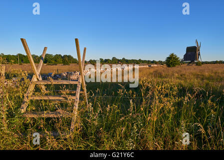 Alvar limestone moor with fence and old windmill in sunset at Isle if Oeland, province Kalmar, Sweden - Stock Photo