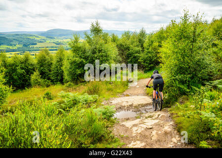 Mountain bikers at Comrie Croft trail centre near Crieff Perthshire - Stock Photo