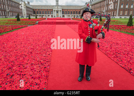 London, UK. 22nd May, 2016. A bagpipe tribute played by Chelsea Pensioner Michael Shanahan - 5000 Poppies, startes - Stock Photo