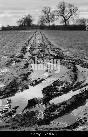 Black and white photography, Landscape, muddy, mud, field, nature, land, dirt, countryside, grass, rural, water, - Stock Photo