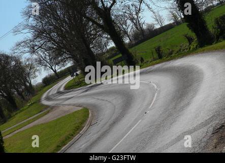 curvy roads near me, twisty roads, road, twisty, winding, travel, nature, mountain, landscape, yellow, highway, - Stock Photo