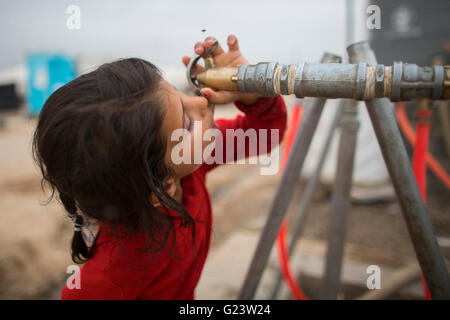 Water distribution in Khanaqin refugee camp, Northern Iraq. - Stock Photo