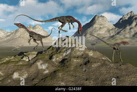 Campsognathus Carniverous Bipedal Dinosaurs. - Stock Photo