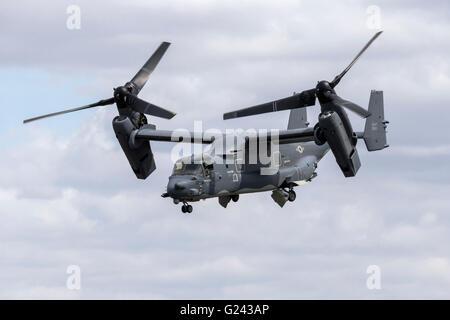 Bell Boeing MV22 Osprey - Stock Photo