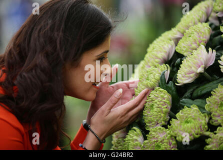 Channel 5 news presenter Dani Sinha has a close look at a flower named Rossano Charlotte - in honour of Princess - Stock Photo