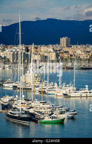 Boats in the marina below the city of Palma de Mallorca, Spain - Stock Photo
