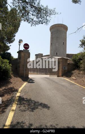 a beautiful picture of the road leading to Bellver Castle, Palma de Mallorca, Castello de Bellver, Palma di Maiorca - Stock Photo
