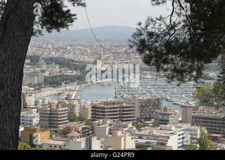 a beautiful panoramic shot of the city of Palma de Mallorca with it's harbour from a distance, summer, tourism, - Stock Photo