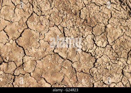 Dried cracked mud drought surface texture stock photo 15737258 a beautiful picture of dried and cracked up mud ground texture pattern sciox Images