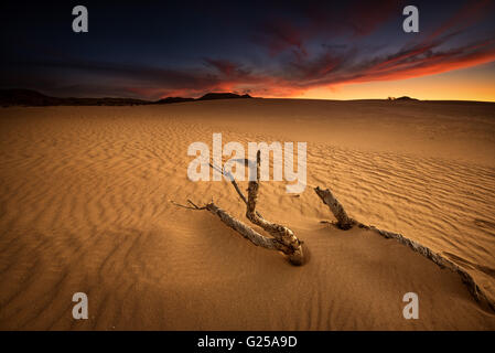 Sunset over sand dunes, Corralejo, Fuerteventura, Las Palmas, Canary Islands, Spain - Stock Photo