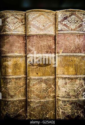 Close-up of three vintage books on bookshelf - Stock Photo