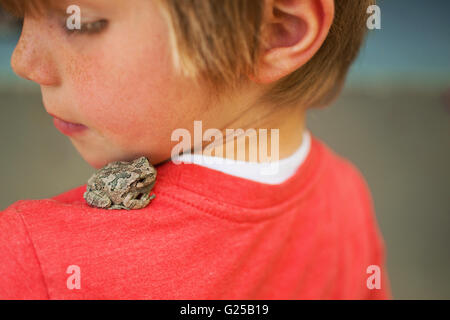 Toad sitting on boy's shoulder - Stock Photo