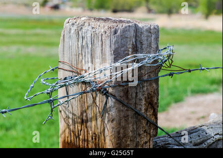 Barbed wire on ranch meadow wooden fencepost; central Colorado; USA - Stock Photo