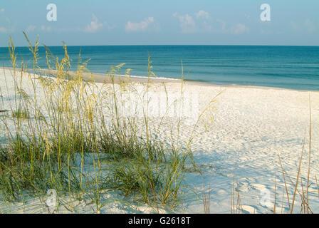 White sand beaches of St. Joseph's Peninsula State Park, FL. - Stock Photo