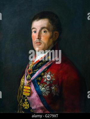 Duke of Wellington (1769-1852), portrait by Francisco de Goya, 1812-14. - Stock Photo