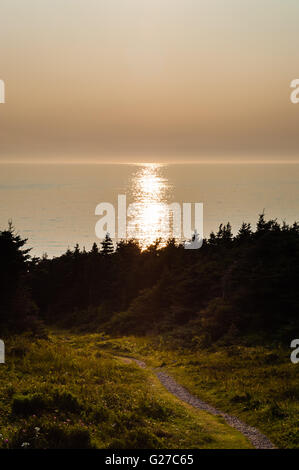 Small rocky path among trees leading towards water with bright sunlight reflecting in vertical line under hazy brown - Stock Photo