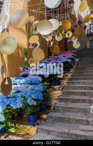 HYDRANGEAS IN FLORAL ART EXHIBITION IN GIRONA. CATALONIA. SPAIN. - Stock Photo