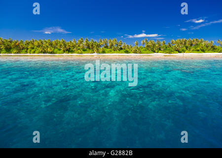 White tropical beach in Maldives with beautiful palm trees and blue lagoon. Background concept - Stock Photo