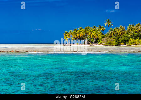 Perfect tropical beach in Maldives with few palm trees and blue lagoon - Stock Photo