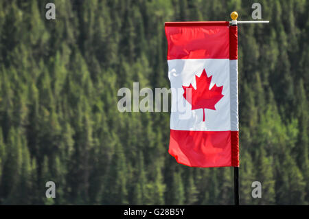 Canadian flag caught against a forest backdrop near Banff in the Canadian Rockies. - Stock Photo