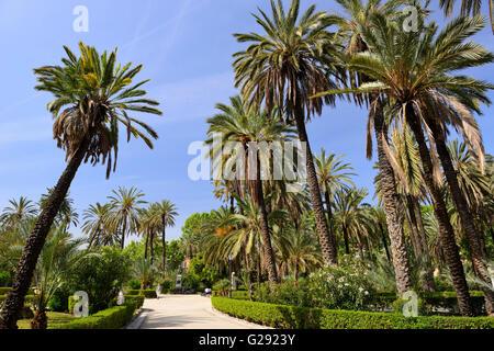 Villa Bonanno Garden in Piazza della Vittoria, Palermo, Sicily, Italy - Stock Photo