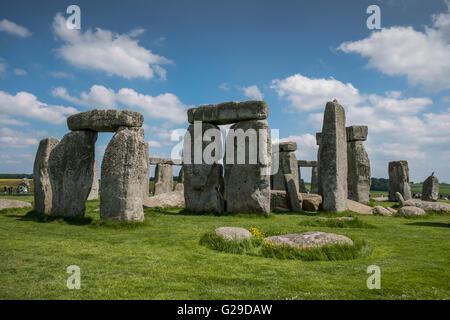 Stonehenge, Wiltshire, UK. 26th May, 2016. A glorious day at Stonehenge attracting a lot of vistors.  Credit:  Paul - Stock Photo