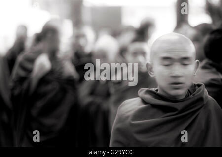 A Tibetan monk finds a moment to meditate while  standing in line to be blessed by the Dalai Lama in front of his - Stock Photo