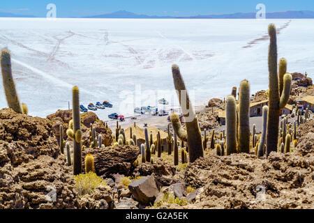 Tourists parking car at Incahuasi Island in Salar de Uyuni Salt Flat for sightseeing and having lunch - Stock Photo
