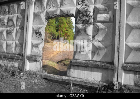 Portal to another world. Hole in an old fence in front of a beautiful forest - Stock Photo