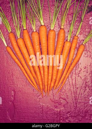 Carrots arranged on magenta underground - Stock Photo