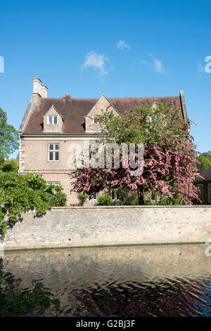 Magdalene College Cambridge UK with trees in blossom in the garden - Stock Photo