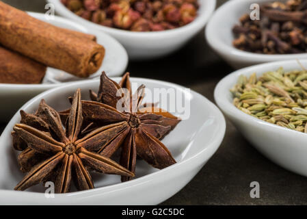 Star Anise and Five Spice in White Spoons with anise in foreground - Stock Photo