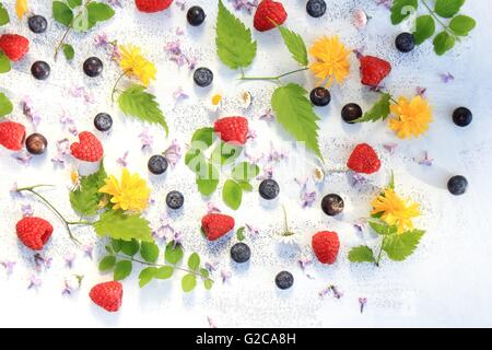 Beautiful summer/ spring background with fresh flowers and leaves on white - Stock Photo