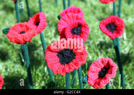 Crocheted poppies at the RHS Chelsea Flower Show 2016 - Stock Photo