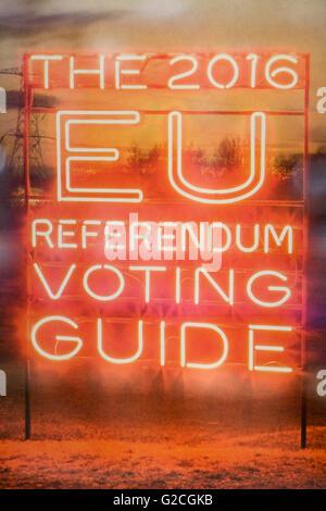 Neon EU Referendum voting Guide information - Stock Photo