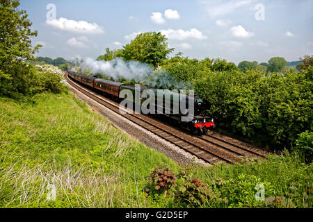Sherrington, Wiltshire, UK. 28th May, 2016. A3 Class 60103 Flying Scotsman steams through the Wiltshire countryside - Stock Photo