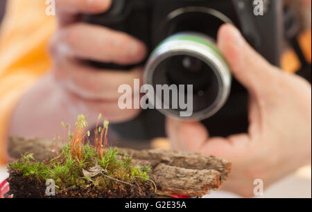 male hands holding a digital camera - Stock Photo