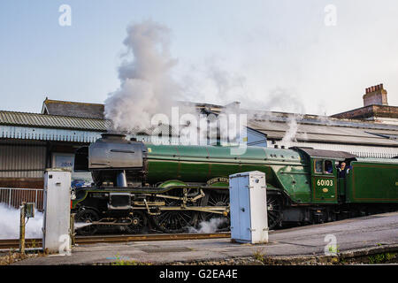 Salisbury, UK. 28th May, 2016. The world famous  Steam Locomotive Flying Scotsman on her UK tour visits Wiltshire.Pulling - Stock Photo