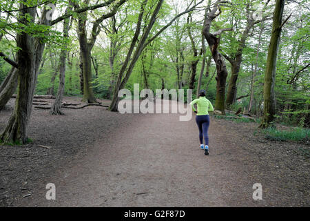 Rear view of a young woman in lycra and fluorescent jacket jogging along tree lined path in Highgate Wood, North - Stock Photo