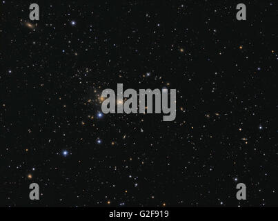 Hundreds of galaxies in the Coma Cluster, Abell 1656. - Stock Photo