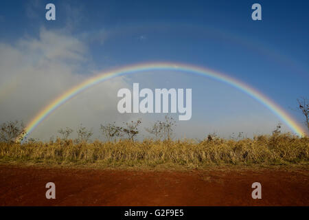 Double rainbow with a faintly visible full moon over a field in Maui, Hawaii. - Stock Photo